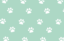 paw print inverse.png
