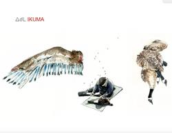 Extrait du livre Ikuma, Carnet de to