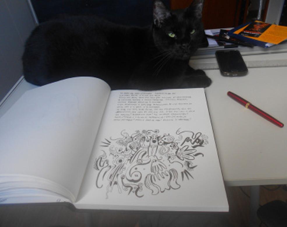 gato e pensamento