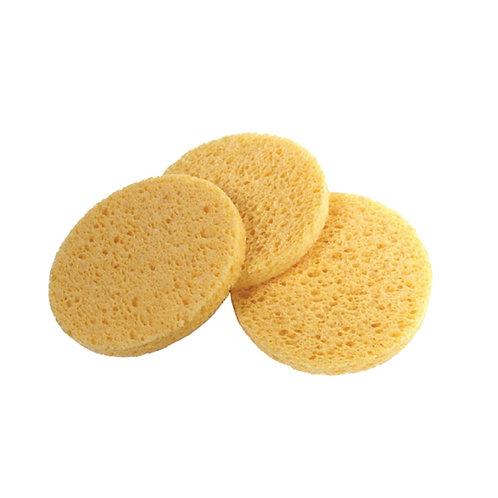 NonCompressed Sponges(25)