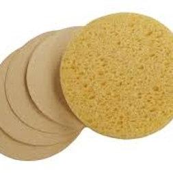 Sponge-Compressed 24ct