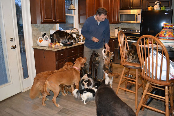 John feeds all the pets a snack