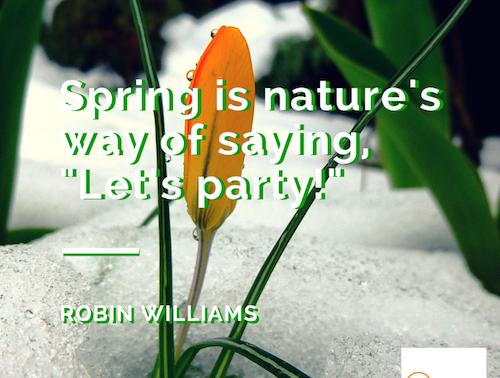 A Spring Social Media Awakening