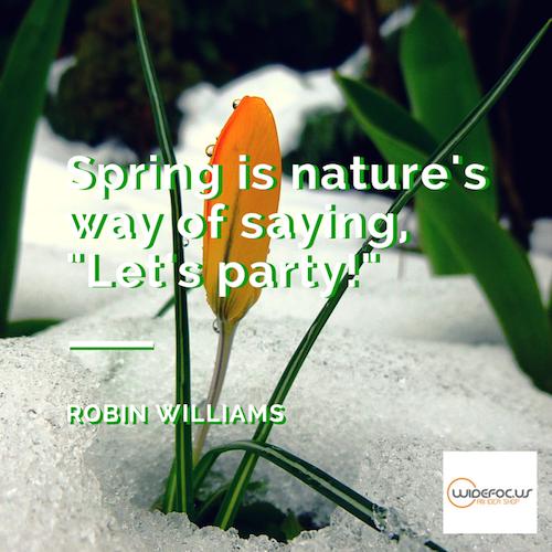 Spring Quote.png