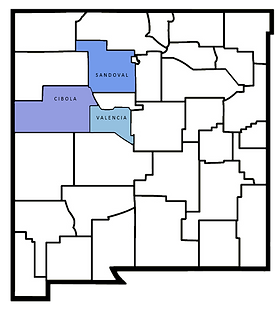 new Mexico districts.png