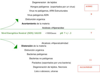 BASIC PRINCIPLES THAT SUPPORT BIOMAGNETISM THERAPY (I)