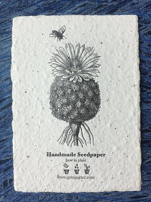 """Cactus & Bee"" Seed Card"