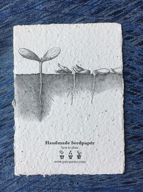 """Seed Growing"" Seed Card"