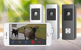 goat doorbell.png