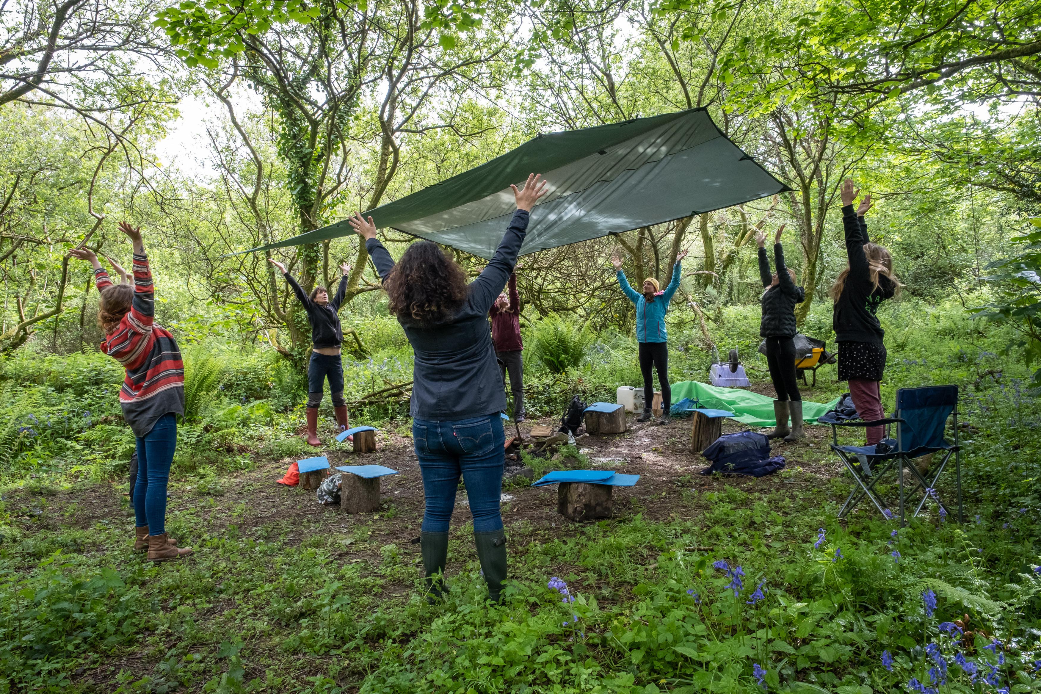 Woodland Wellness Programme