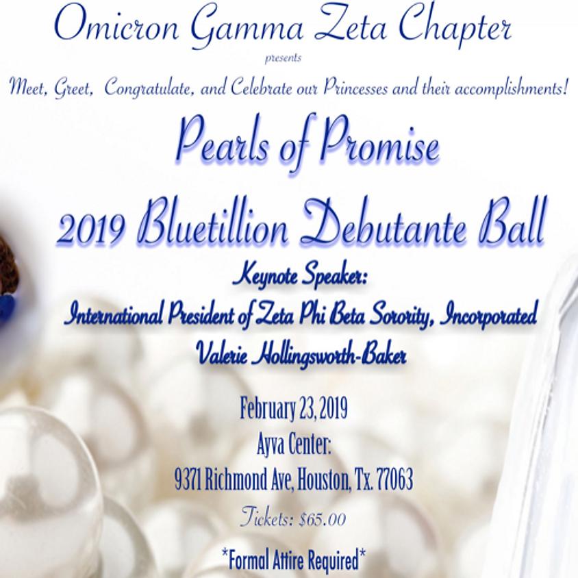 Pearls of Promise 2019 Bluetillion Debutante Ball