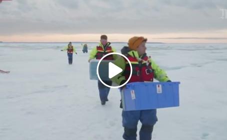 Du plastique pleut au pôle nord !