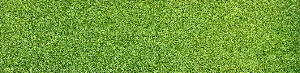 Grassy%20Field_edited.jpg