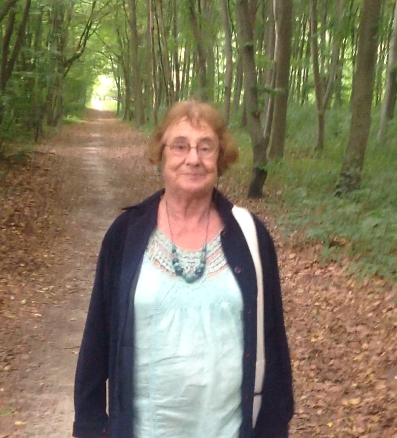 Promenade à Chantilly (2013)