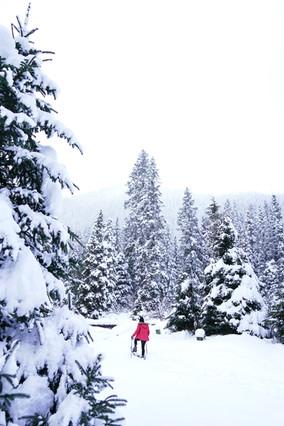 Corvallis Photography   Winterial Snowshoe