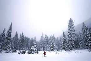 Corvallis Photography | Winterial Snowshoes