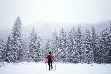 Corvallis Photography | winterial