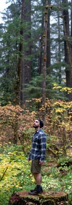 Corvallis Videograhy   Fall Colors