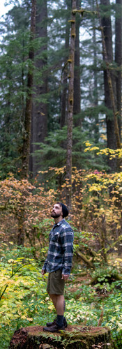 Corvallis Videograhy | Fall Colors
