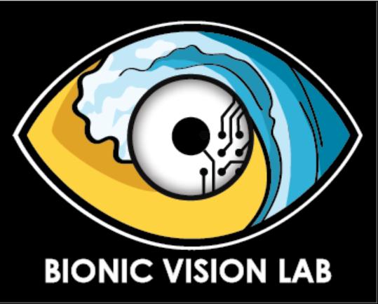 Bionic Vision Lab Logo