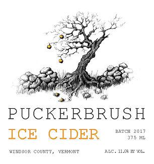 2017 Ice Cider 375 Front.jpg