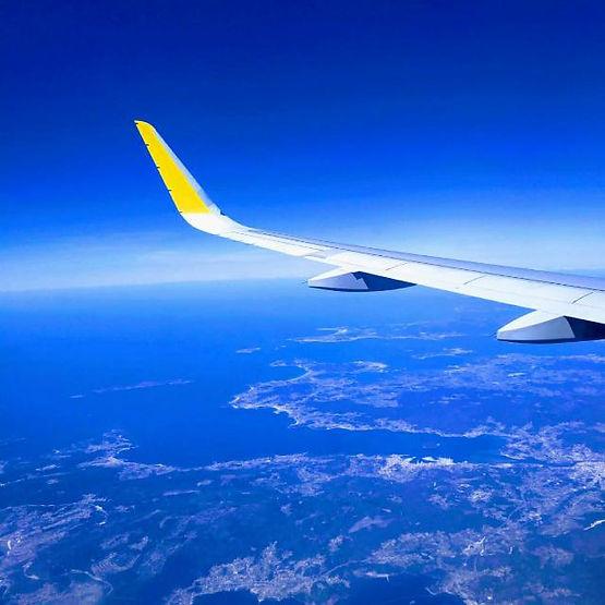 ala avión.jpg