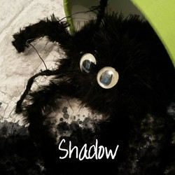 Shadow the Spider