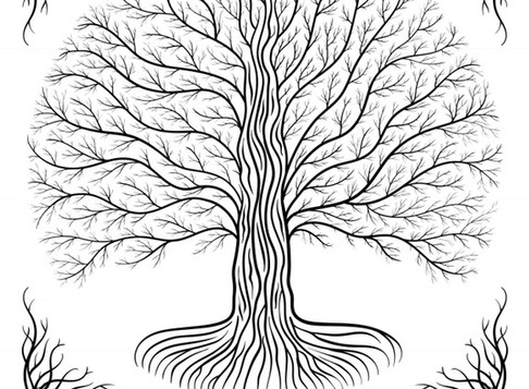 Root Down Deep - Earth Chakra