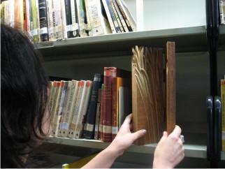 biblioteca#4c1.jpg