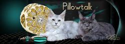 FB-Pillowtalk
