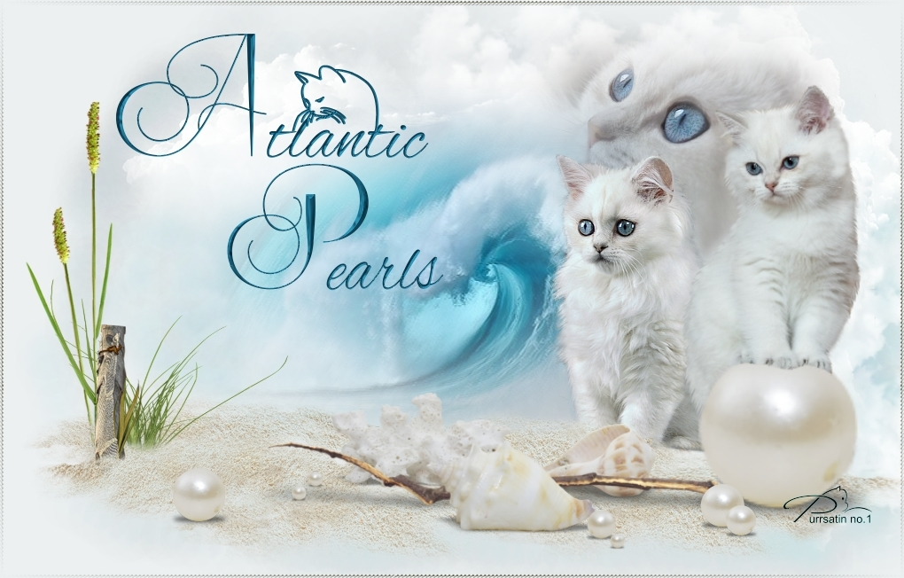 atlantic-pearls-web