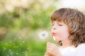 29 aprilie- World Wish Day, Ziua Internationala a Dorintei