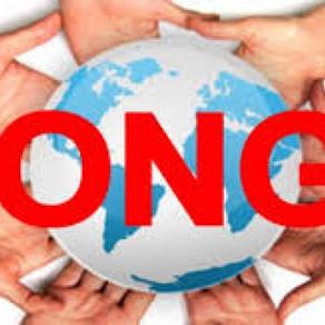Ce este un ONG si ce face el