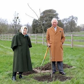 Baldachinul verde- proiectul pentru jubileul de platina al Reginei Elisabeta a-II-a