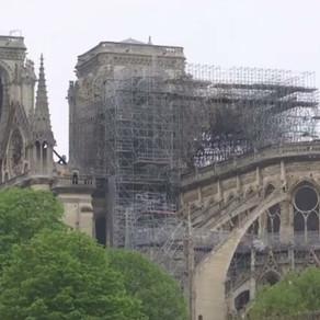 Aproape 2 ani de la incendiul de la Notre Dame: Acoperișul va fi refăcut cu stejari de 200 de ani