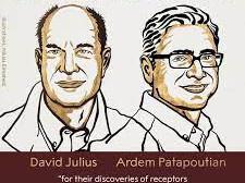 Castigatorii premiului Nobel pentru medicina pe anul 2021 s-au bazat pe ardeiul iute