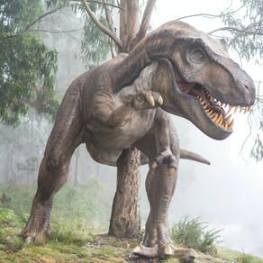 Au fost descoperite rămășițele celui mai mare dinozaur