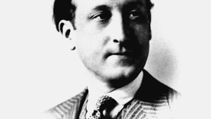 Felix Brunea Fox