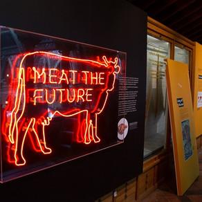 Insecte prajite, carne artificiala sau vegani pentru salvarea planetei?