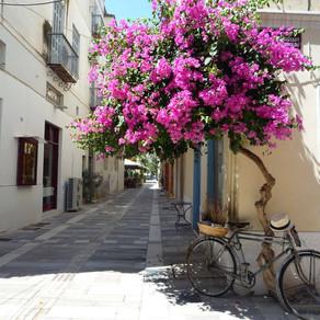Cine vine din Grecia intra in carantina