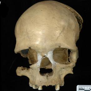 O femeie care a trăit în România acum 35.000 de ani, îi ajută pe cercetători