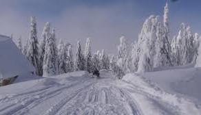 Iarna in Mica Siberie