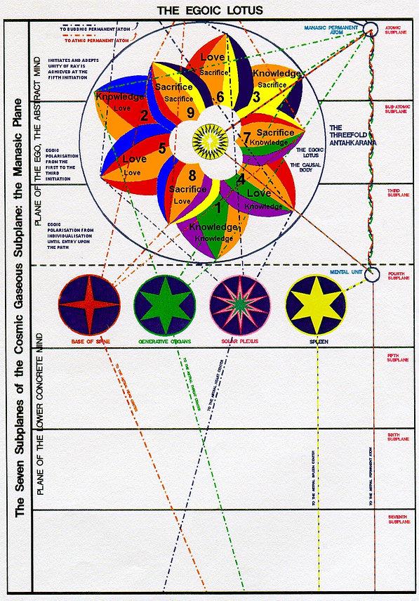 Chart IX--Egoic Lotus Revised.jpg