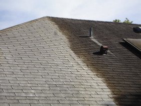 roof-cleaning-before-after.jpg