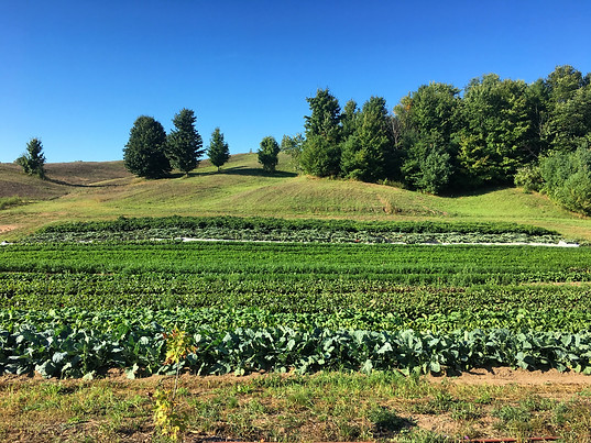Lakeview Hill Farm Fields