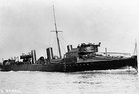 large HMS shark (2).jpg
