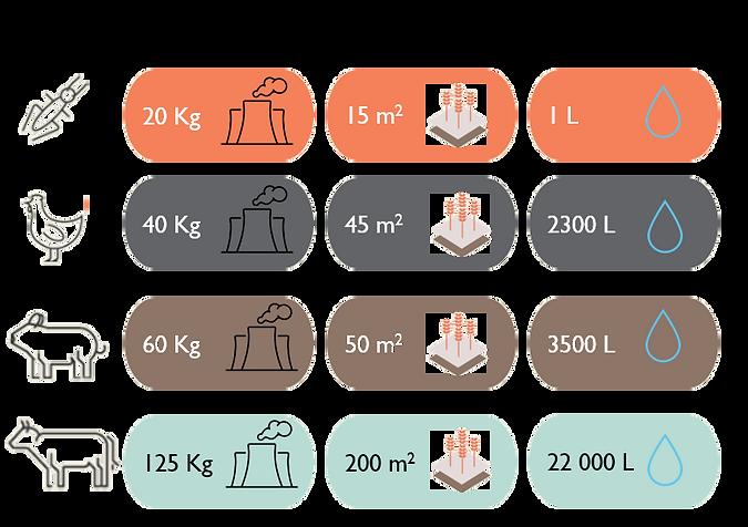 imageonline-co-transparentimage (84).png