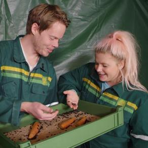 NRK-Line fikser maten