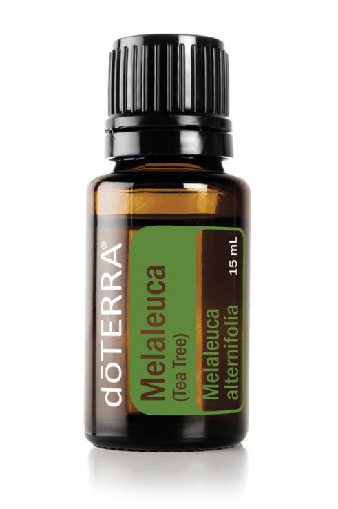 Melaleuca (Tea Tree 15 mL)