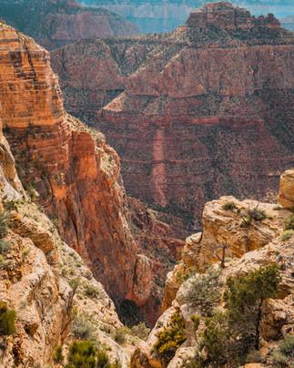 Grand Canyon Split
